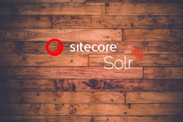 Minimizing Schema Changes to Sitecore Indexes